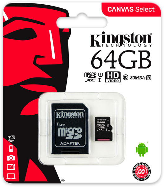 Micro SD Kingston